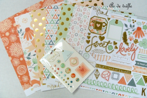 as de trèfle,annabel,mme,my mind eyes,on trend,atelier créatif,fete des meres,cadeau,coffret,album photo,skivertex